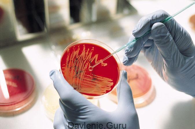 Бактериологический анализ