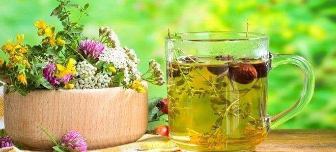 Лечение бессонницы лекарственными травами