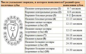 Какие сроки прорезывания постоянных зубов у детей