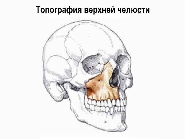Топография