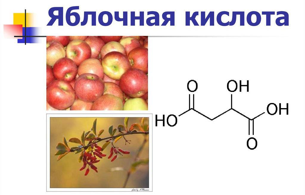 Яблочная кислота