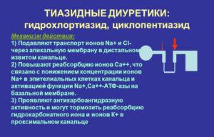 ТаблеткиТриампурКомпозитум от чего назначают?