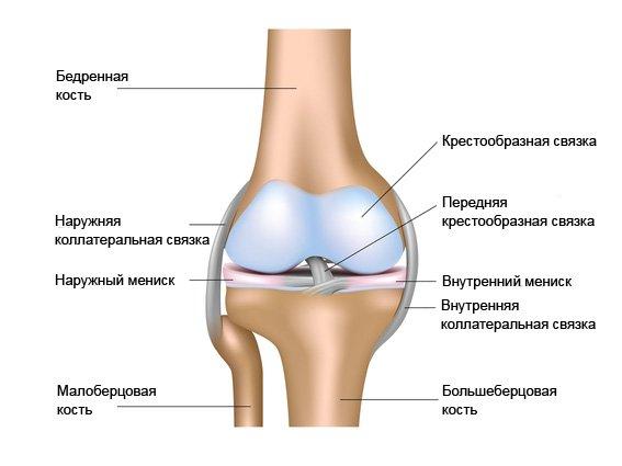 Что делать при ушибе колена, если оно опухло. Как лечить в домашних условиях?