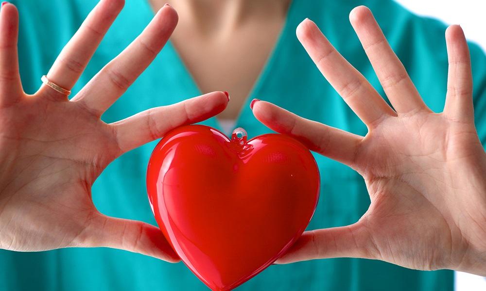 Патологии сердечно-сосудистой системы