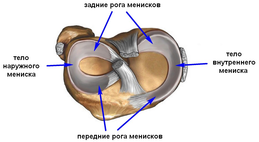 Фото структуры