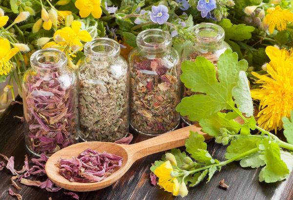 Заготовки для травяного чая