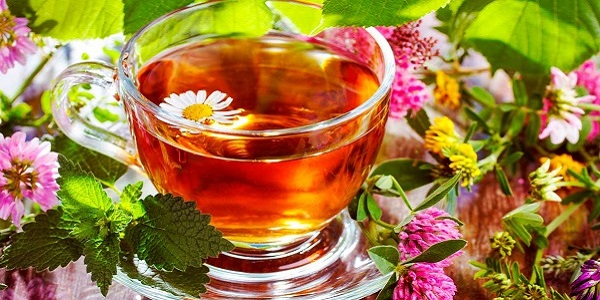 Чай из трав от тахикардии
