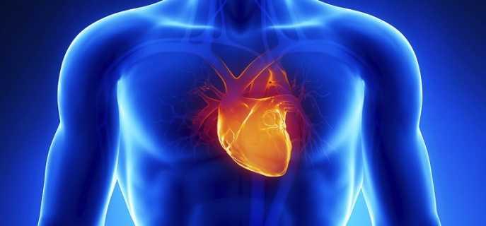 Чем отличаются инсульт и инфаркт