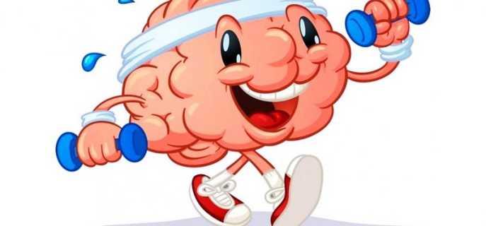 Всестороннее развитие головного мозга