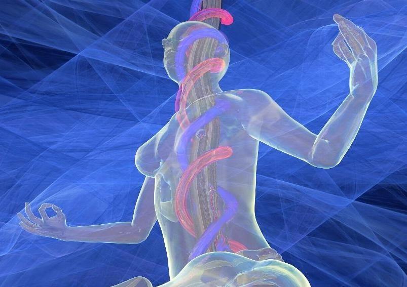 Фруктоза с глюкозой насыщают внутренние органы энергией