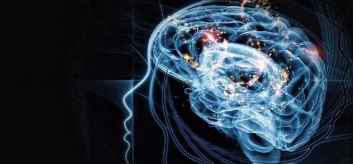 Можно ли заставить мозг работать на 100%