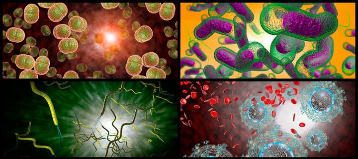 Причины возникновения орхита: инфекции