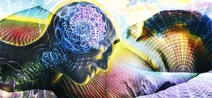 Деятельность мозга во сне