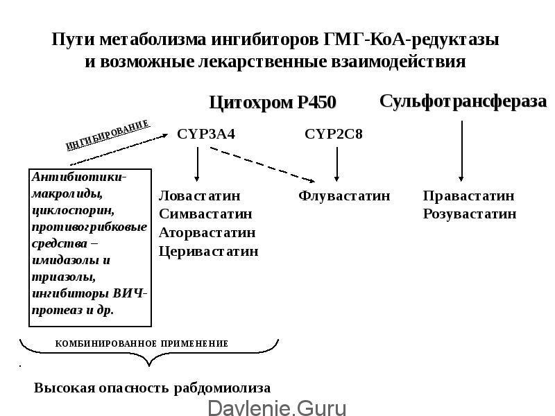 Взаимодействие статинов