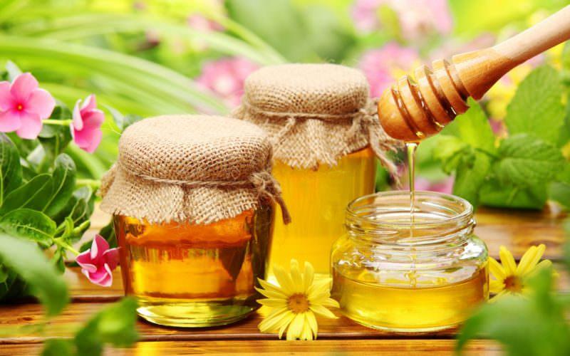 Мед для лечения гонартроза