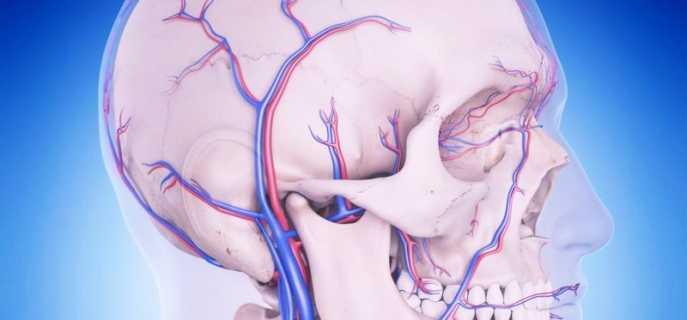 Особенности затруднения венозного оттока