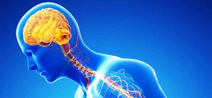 Классификация заболеваний нервной системы