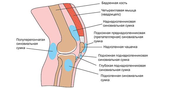 Коленный бурсит, схема